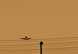 plane-on-a-wire-yellow